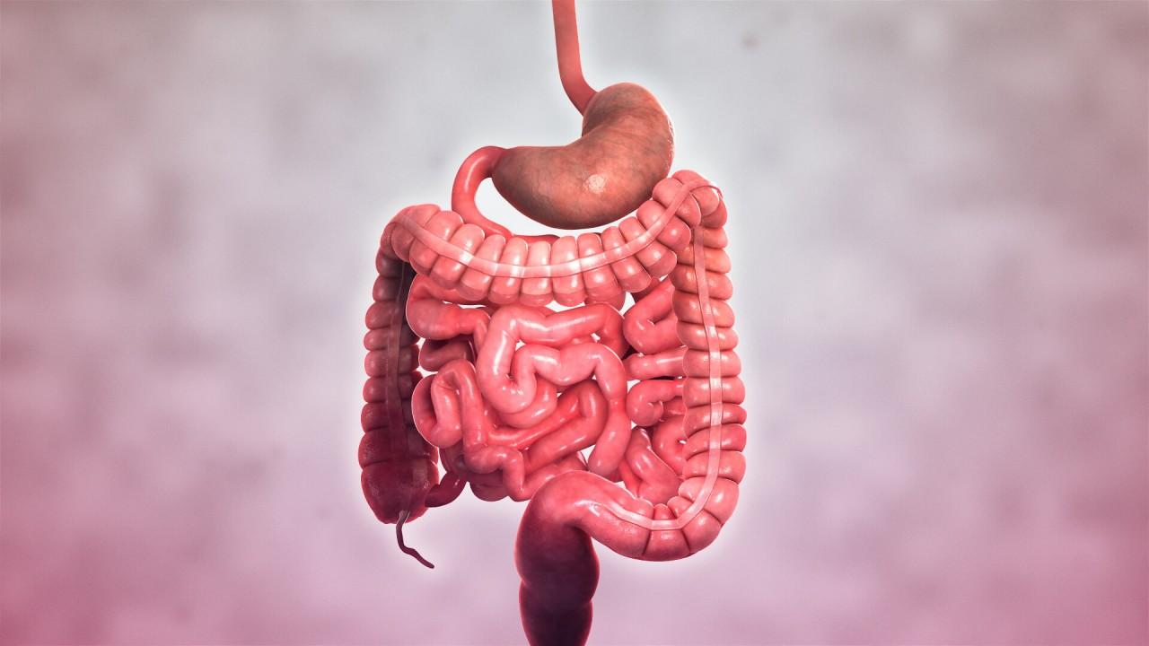 Crohn Hastalığı Hakkında Bilmeniz Gereken Her Şey