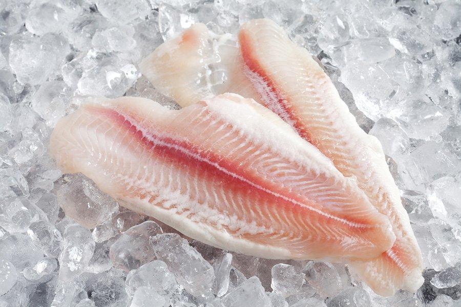 Basa Balığı Sağlıklı mı?
