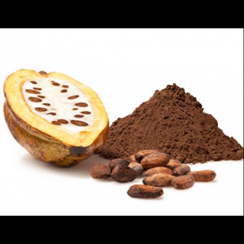 Kakao Kaç Kalori