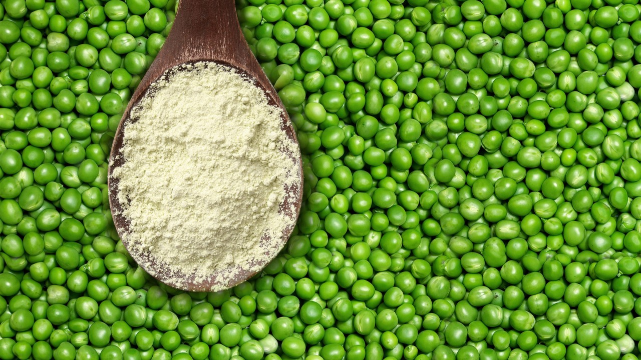 Bezelye Protein Tozu Nedir? Faydaları Nelerdir?