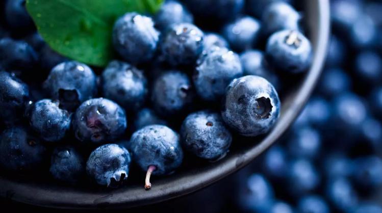 Böbrek Hastaları İçin En İyi 20 Gıda