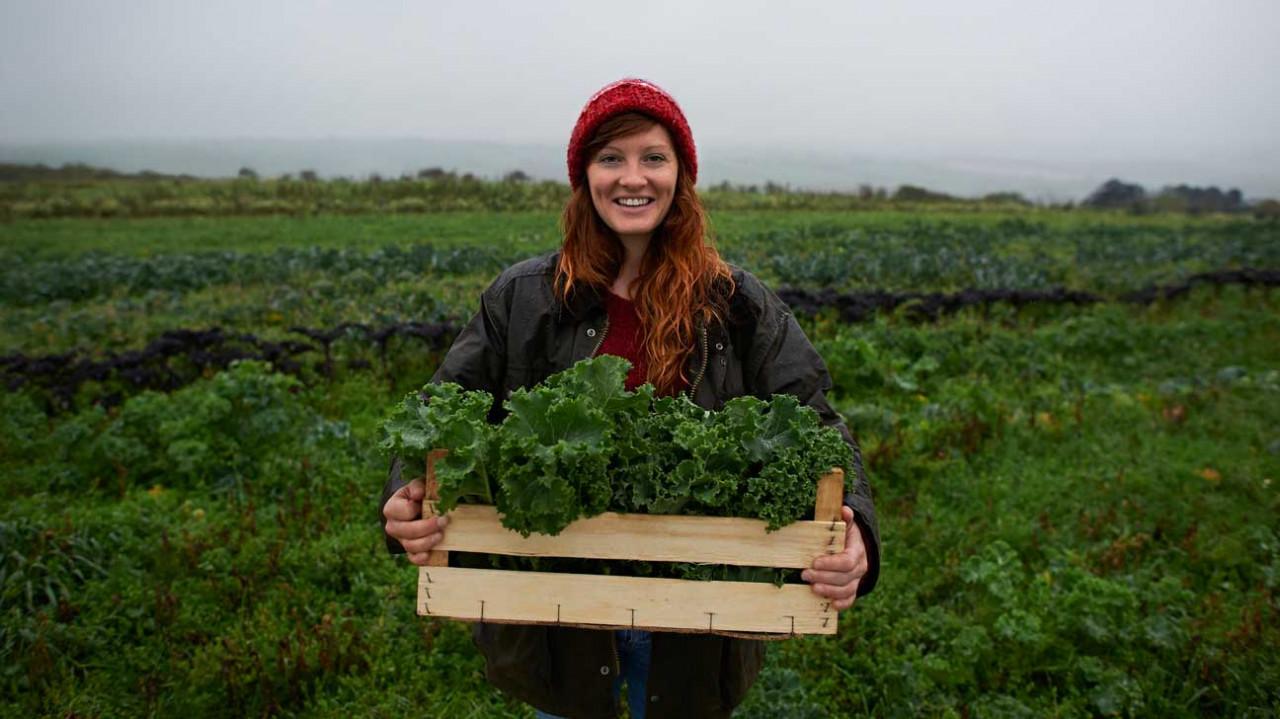 En Sağlıklı 13 Yeşil Yapraklı Sebze