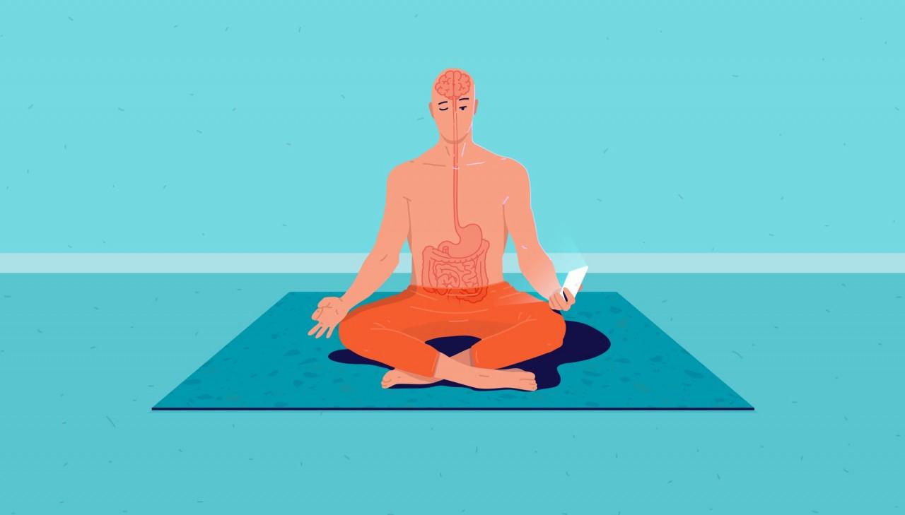 Bağırsak Beyin İlişkisi Nedir, Nasıl Çalışır? Bağırsak Beyin Ekseninde Beslenme