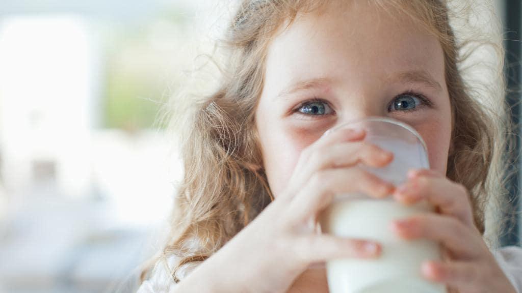 Laktozsuz Süt Nedir?