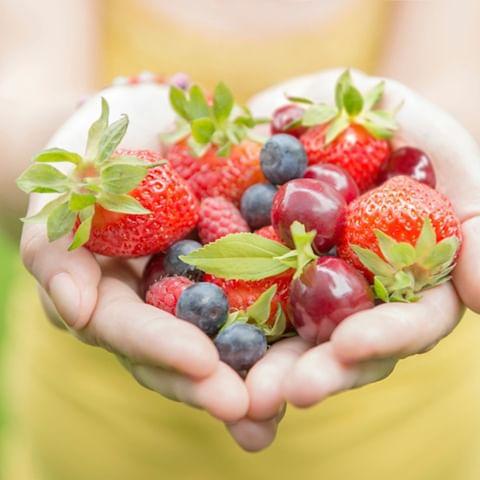 Meyve Sağlığınız İçin İyi mi Kötü mü? Tatlı Gerçek