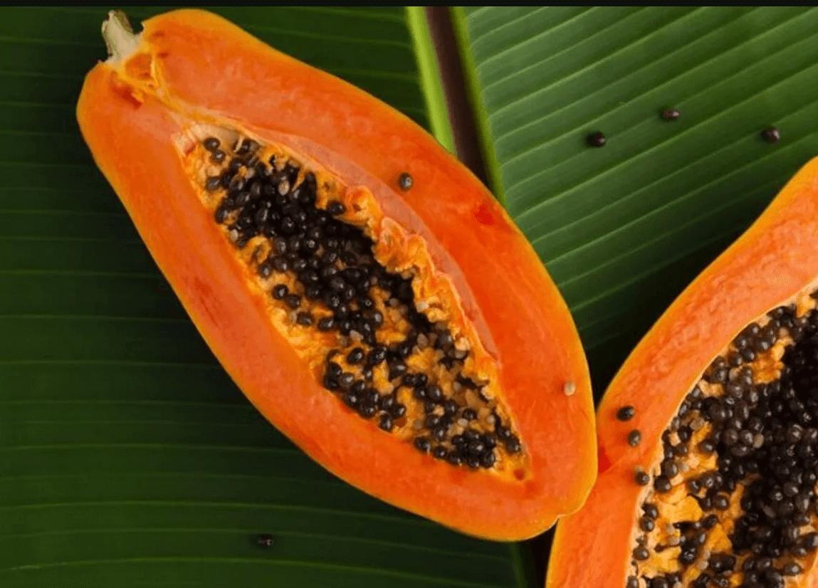 Papaya Çekirdeklerini Yiyebilir Misiniz?