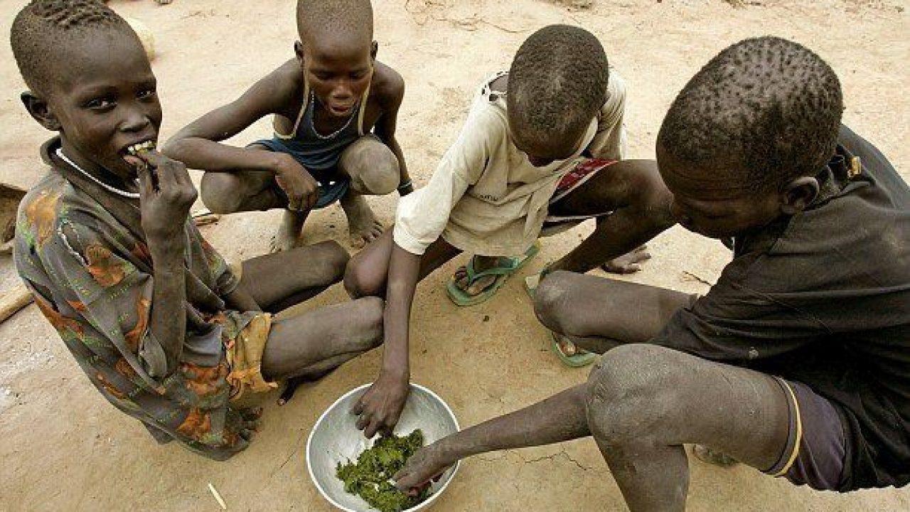 Yetersiz Beslenmenin Sağlığa Etkisi
