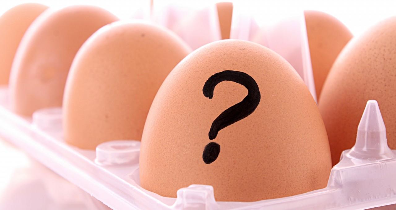 Yumurta İçin 13 Etkili Alternatif - Yumurta Yerine Geçen Besinler